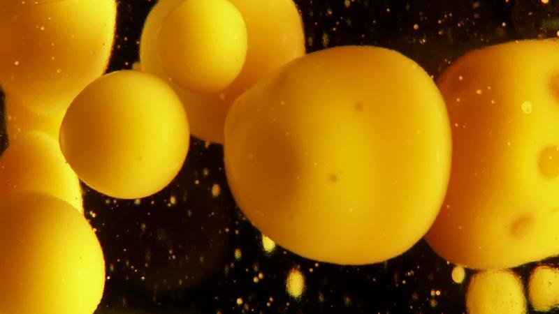 Пузырьки парафина
