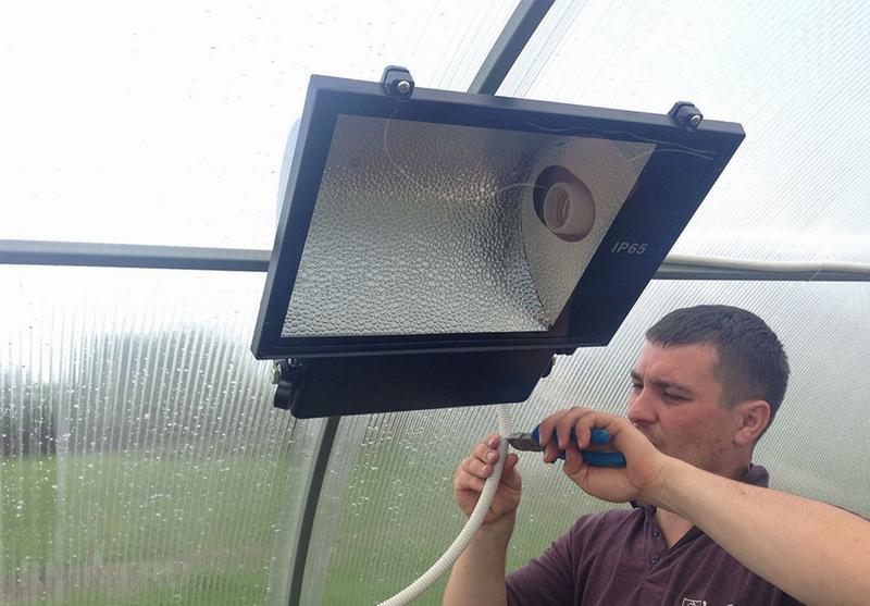 Безопасное освещение в теплице