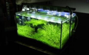 своими руками подсветка для аквариума